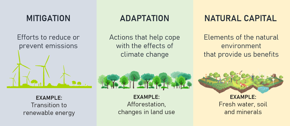 The Strategy is split across three themes: Mitigation, Adaptation and Natural Capital